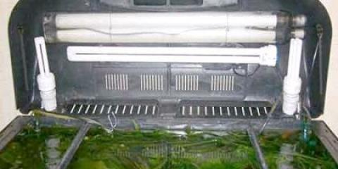 Як зробити освітлення для акваріума самостійно?