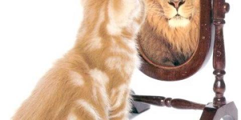 Поради, як підвищити самооцінку та впевненість у своїх силах?